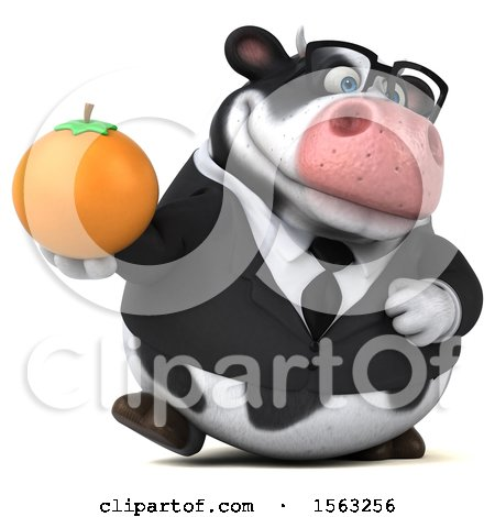 Clipart of a 3d Business Holstein Cow Holding an Orange, on a White Background - Royalty Free Illustration by Julos