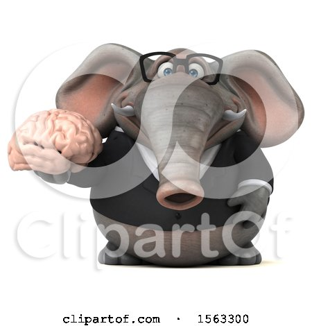 Clipart of a 3d Business Elephant Holding a Brain, on a White Background - Royalty Free Illustration by Julos