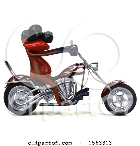 Clipart of a 3d Red Frog Biker Riding a Chopper Motorcycle, on a White Background - Royalty Free Illustration by Julos