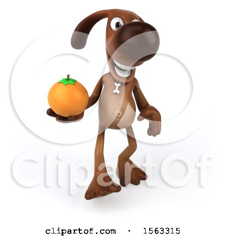 Clipart of a 3d Brown Chocolate Lab Dog Holding an Orange, on a White Background - Royalty Free Illustration by Julos