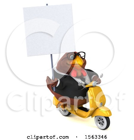 Clipart of a 3d Chubby Brown Business Chicken Riding a Scooter, on a White Background - Royalty Free Illustration by Julos