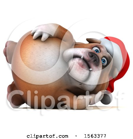 Clipart of a 3d Christmas Bulldog, on a White Background - Royalty Free Illustration by Julos