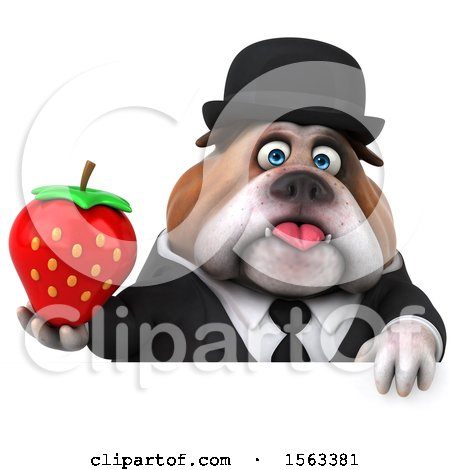 Clipart of a 3d Gentleman or Business Bulldog Holding a Strawberry, on a White Background - Royalty Free Illustration by Julos