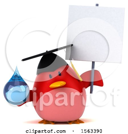 Clipart of a 3d Red Bird Graduate Holding a Water Drop, on a White Background - Royalty Free Illustration by Julos