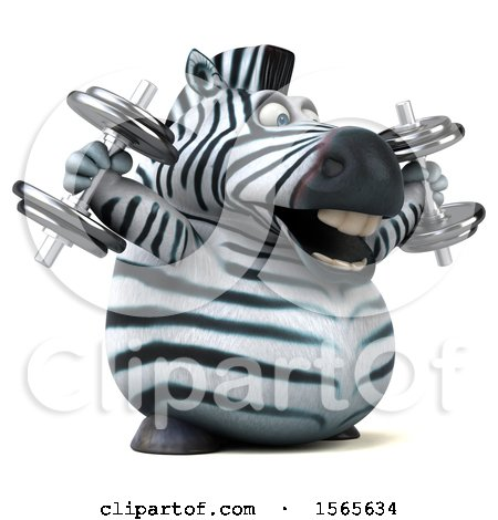 Clipart of a 3d Zebra Working out with Dumbbells, on a White Background - Royalty Free Illustration by Julos