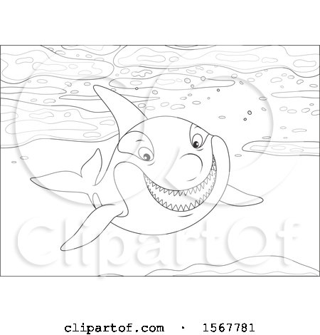 Clipart Of A Black And White Killer Whale Orca Swimming In The Ocean