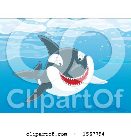 Clipart of a Killer Whale Orca Swimming in the Ocean - Royalty Free Vector Illustration by Alex Bannykh