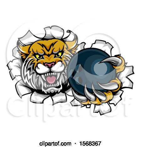 Clipart of a Vicious Wildcat Mascot Breaking Through a Wall with a Bowling Ball - Royalty Free Vector Illustration by AtStockIllustration