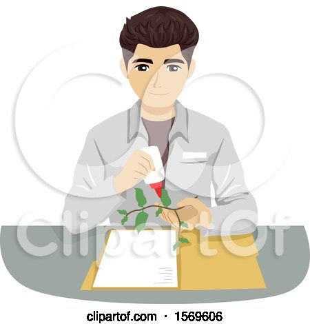 Clipart of a Teen Guy Botanist Setting up an Herbarium - Royalty Free Vector Illustration by BNP Design Studio