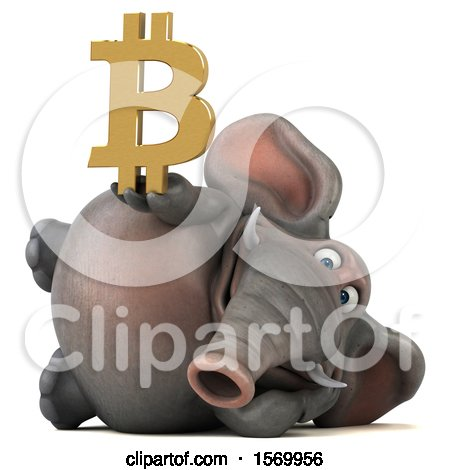 Clipart of a 3d Elephant Holding a Bitcoin Symbol, on a White Background - Royalty Free Illustration by Julos