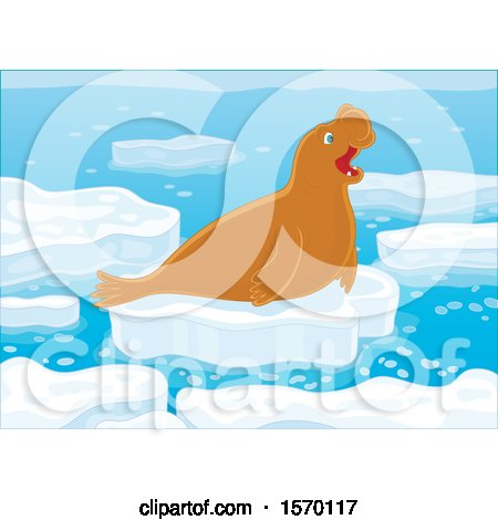 Clipart of a Cute Elephant Seal on an Ice Floe - Royalty Free Vector Illustration by Alex Bannykh