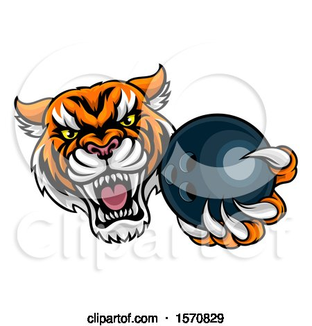Clipart of a Vicious Tiger Sports Mascot Grabbing a Bowling Ball - Royalty Free Vector Illustration by AtStockIllustration