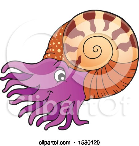 Clipart of a Cute Nautilus - Royalty Free Vector Illustration by visekart