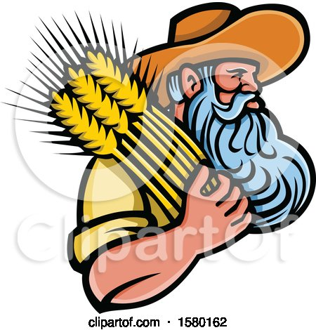 Bearded Senior Male Farmer Holding Wheat Posters, Art Prints