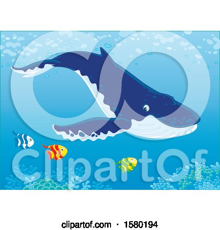 Clipart of a Humpback Whale Swimming with Fish over a Reef - Royalty Free Vector Illustration by Alex Bannykh