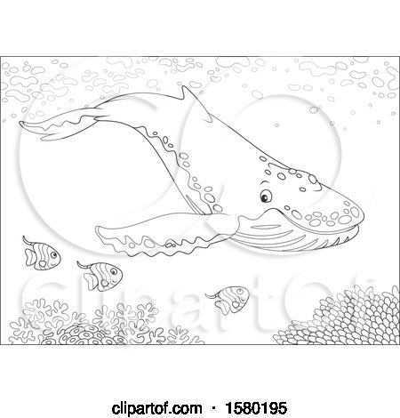 Clipart of a Lineart Humpback Whale Swimming with Fish over a Reef - Royalty Free Vector Illustration by Alex Bannykh