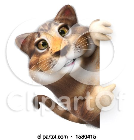 Clipart of a 3d Tabby Kitty Cat Pointing Around a Sign, on a White Background - Royalty Free Illustration by Julos