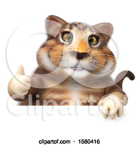 Clipart of a 3d Tabby Kitty Cat Holding a Thumb Up, on a White Background - Royalty Free Illustration by Julos