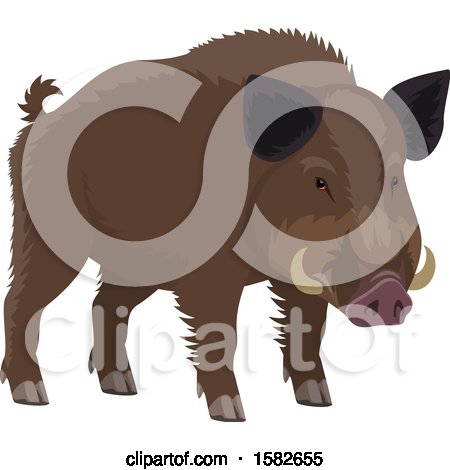 Clipart of a Wild Boar - Royalty Free Vector Illustration by Vector Tradition SM