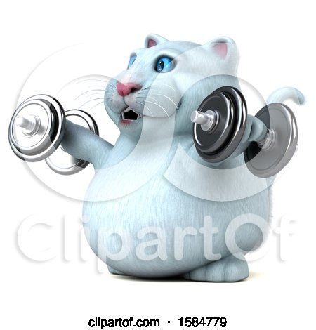 Clipart of a 3d White Kitty Cat Working out with Dumbbells, on a White Background - Royalty Free Illustration by Julos