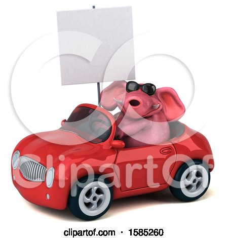 Clipart of a 3d Pink Elephant Driving a Convertible, on a White Background - Royalty Free Illustration by Julos