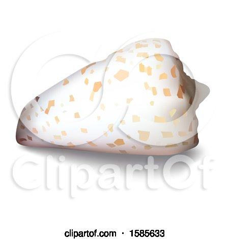 Clipart of a 3d Sea Shell, on a White Background - Royalty Free Vector Illustration by dero