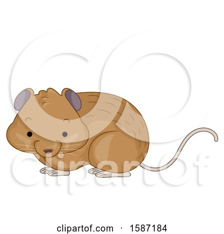 Clipart of a Cute Vole - Royalty Free Vector Illustration by BNP Design Studio