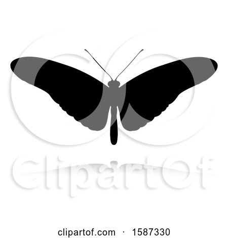Clipart of a Silhouetted Butterfly, with a Reflection or Shadow, on a White Background - Royalty Free Vector Illustration by AtStockIllustration