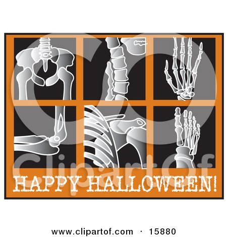 Series Of Xrays With Text Reading Happy Halloween Clipart Illustration by Andy Nortnik