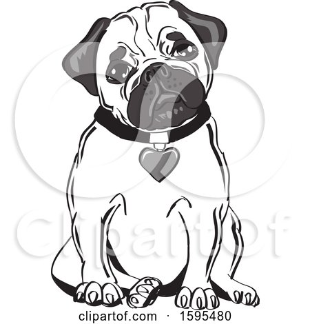 Clipart of a Cute Sitting Pug with a Heart Collar - Royalty Free Vector Illustration by David Rey
