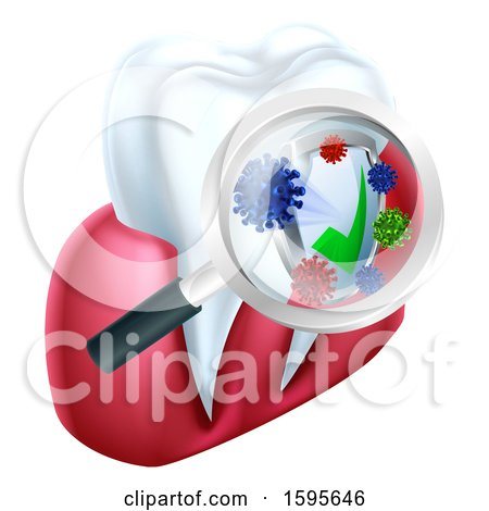 Clipart of a Magnifying Glass over a Tooth and Gums, Displaying Bacteria and a Shield - Royalty Free Vector Illustration by AtStockIllustration