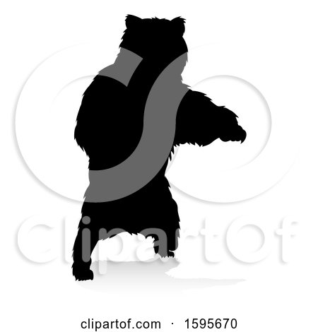 Clipart of a Silhouetted Bear, with a Reflection or Shadow, on a White Background - Royalty Free Vector Illustration by AtStockIllustration