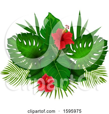 Clipart of a Tropical Hibiscus Flower Design - Royalty Free Vector Illustration by Vector Tradition SM