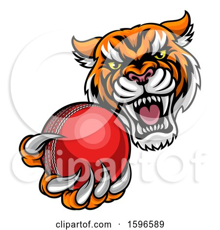 Clipart of a Vicious Tiger Sports Mascot Grabbing a Cricket Ball - Royalty Free Vector Illustration by AtStockIllustration