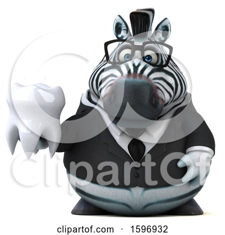 Clipart of a 3d Business Zebra Holding a Tooth, on a White Background - Royalty Free Illustration by Julos