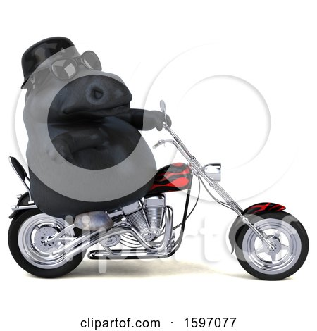 Clipart of a 3d Chubby Black Horse Biker Riding a Chopper Motorcycle, on a White Background - Royalty Free Illustration by Julos