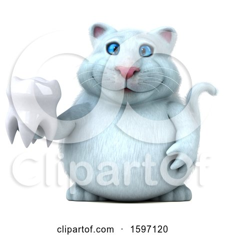 Clipart of a 3d White Kitty Cat Holding a Tooth, on a White Background - Royalty Free Illustration by Julos