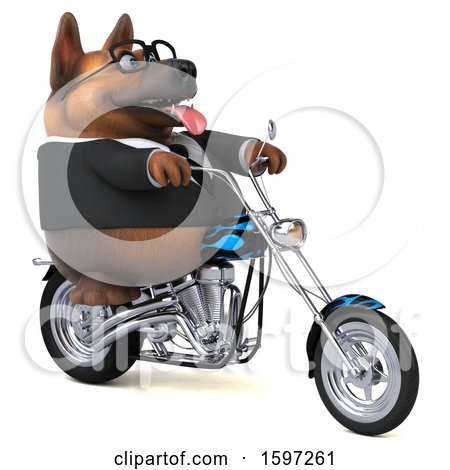 Clipart of a 3d Business German Shepherd Dog Biker Riding a Chopper Motorcycle, on a White Background - Royalty Free Illustration by Julos