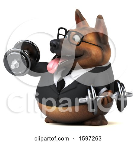 Clipart of a 3d Business German Shepherd Dog Working out with Dumbbells, on a White Background - Royalty Free Illustration by Julos