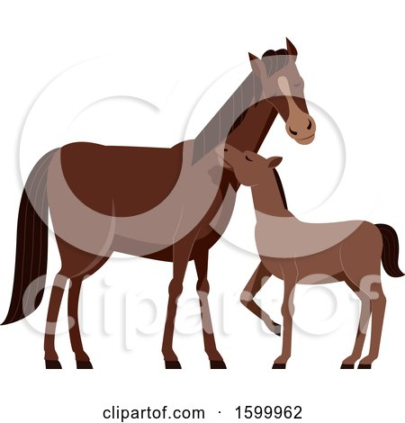 Horse Mother Foal Drawing Stock Illustrations – 59 Horse Mother Foal  Drawing Stock Illustrations, Vectors & Clipart - Dreamstime