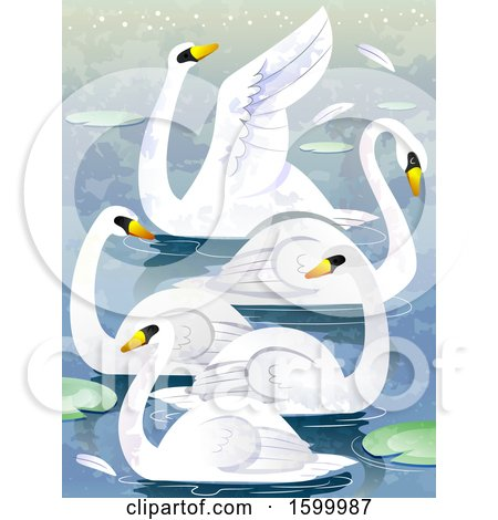 Clipart of a Group or Bevy of Swans - Royalty Free Vector Illustration by BNP Design Studio