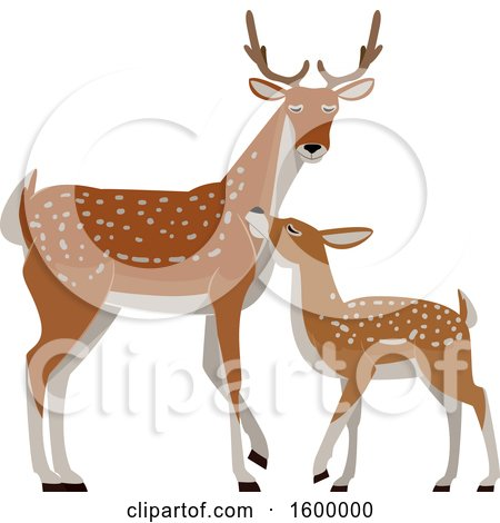 Clipart of a Buck Deer and Fawn - Royalty Free Vector Illustration by BNP Design Studio