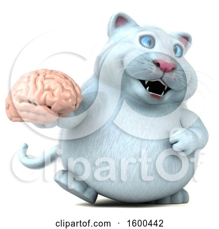 Clipart of a 3d White Kitty Cat Holding a Brain, on a White Background - Royalty Free Illustration by Julos