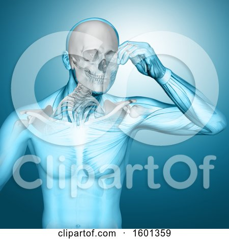 Clipart of a 3d Anatomical Man with Visible Skull and Neck Bones, on Blue - Royalty Free Illustration by KJ Pargeter