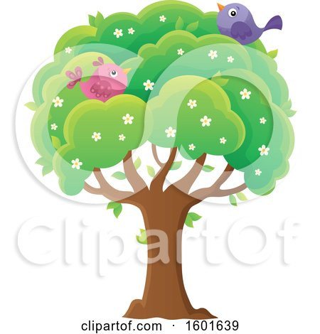 Clipart of a Blossoming Spring Tree with Birds - Royalty Free Vector Illustration by visekart