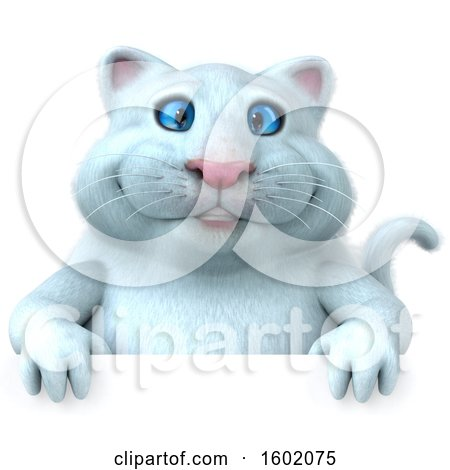 Clipart of a 3d White Kitty Cat over a Sign, on a White Background - Royalty Free Illustration by Julos