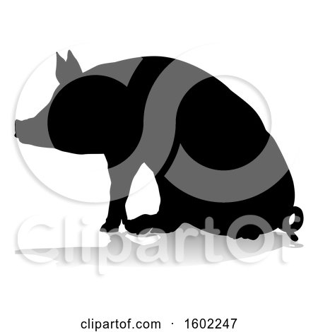 Clipart of a Silhouetted Pig, with a Reflection or Shadow, on a White Background - Royalty Free Vector Illustration by AtStockIllustration