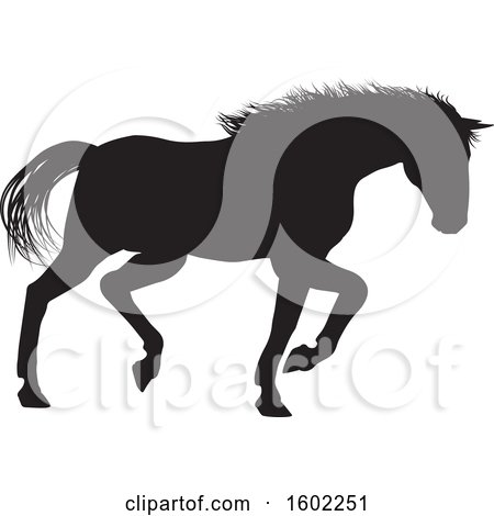 Clipart of a Black Silhouetted Horse - Royalty Free Vector Illustration by AtStockIllustration