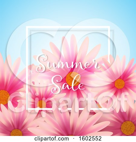Clipart of a Summer Sale Text Design with Pink Daisy Flowers - Royalty Free Vector Illustration by KJ Pargeter