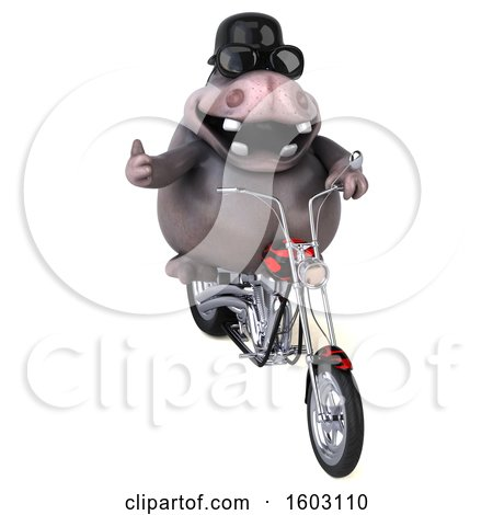 Clipart of a 3d Hippo Biker Riding a Chopper Motorcycle, on a White Background - Royalty Free Illustration by Julos